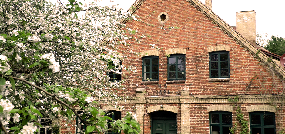 Apfelblüte vor dem Haus